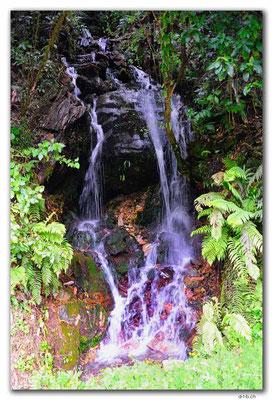 NZ0550.Kahurangi N.P.Waterfall beside the Cobb Dam Road