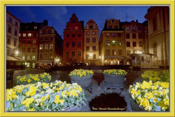 A0180.Stor Torget.Stockholm.SE