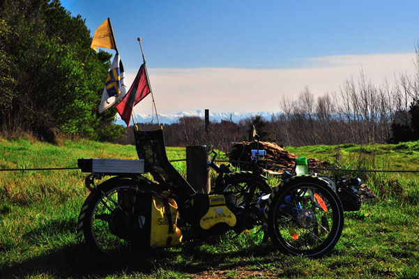 NZ: Trike bei Sawers Arms Reserve
