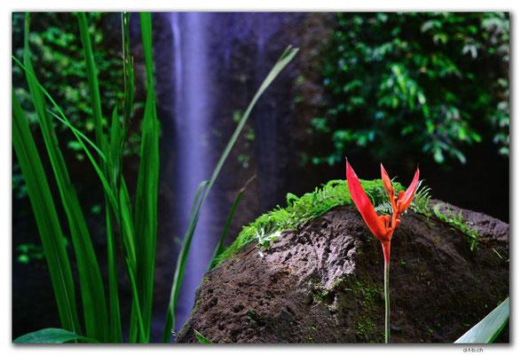 ID0123.Apuan.Tibumana Waterfall small