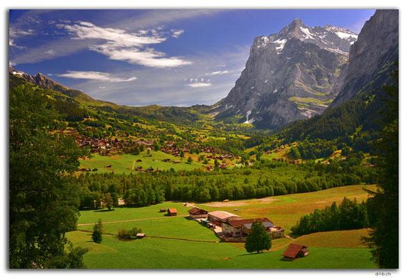 GW0116.Grindelwald