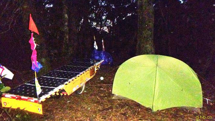 NZ: Solatrike bei wild campieren im Wald an der Kopaki Rd.