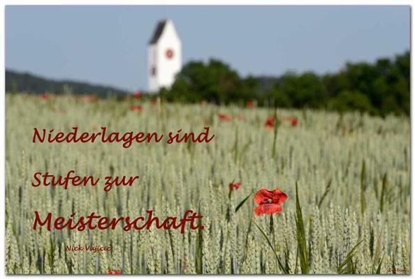 S0223.Ossingen,CH. Text: Nick Vujicic