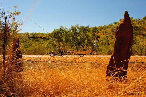AU: Solatrike mit Termitenbauten