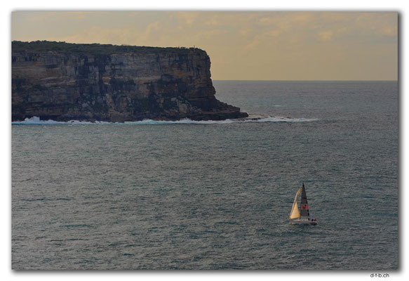 AU1618.Sydney.North Head + Sail Boat
