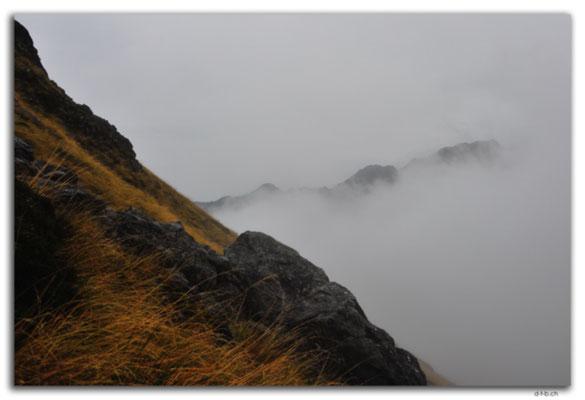 NZ0654.Nelson Lakes N.P.St.Arnaud Ridge in the fog