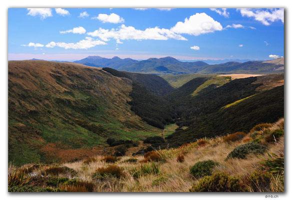 NZ0516.Kahurangi N.P.Deep Creek Valley