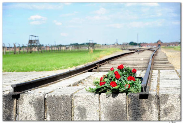 PL049.Birkenau.Schienenende