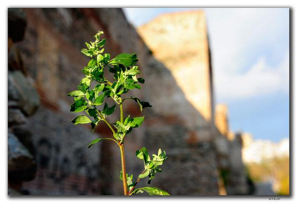 GR0112.Thessaloniki.Stadtmauer