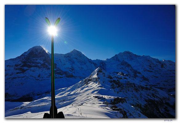 GW0040.Eiger, Mönch und Jungfrau vom Männlichen