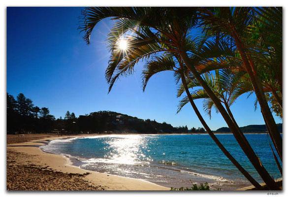 AU1695.Sydney.Palm Beach