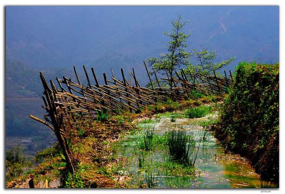 VN0056.Sapa.Muong Hoa Valley
