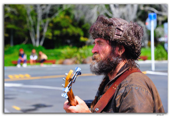 B078.New Zealand.Paihia.Local Bass player