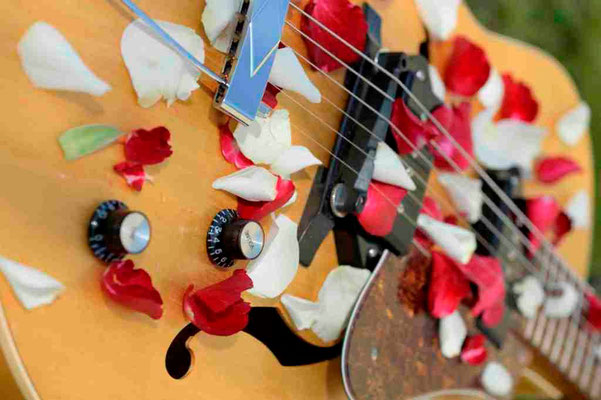 Gitarre mit Rosenblättern bedeckt