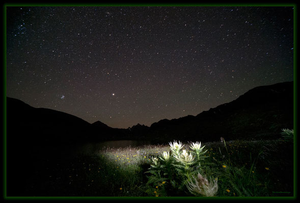 A0525.Novaier Seeli.Klosters.CH