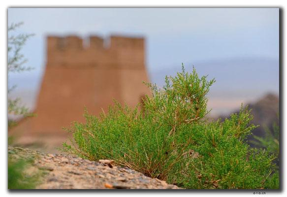 CN0130.Jiayuguan.Overhanging Great Wall