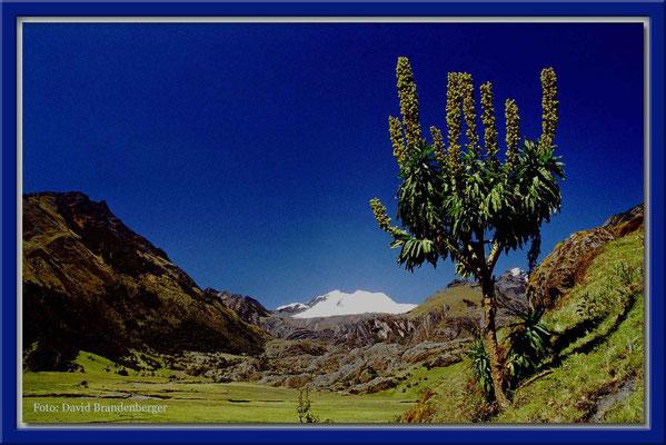 111.Cordillera Blanca,Peru