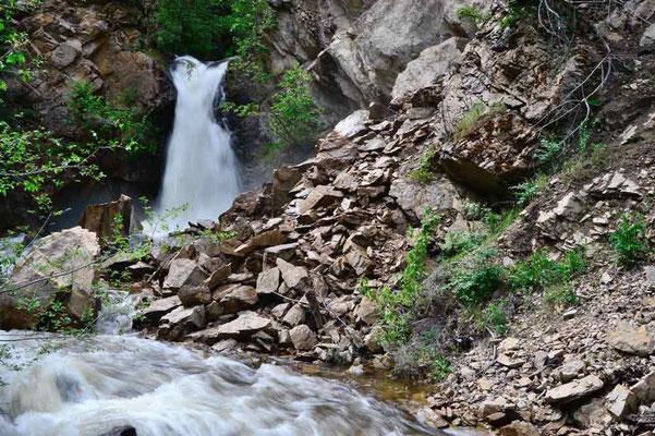 CA0219 Hardy Falls