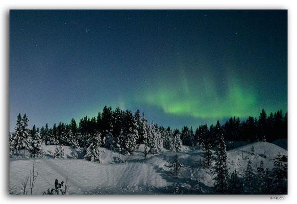 SE0113.Nordlicht