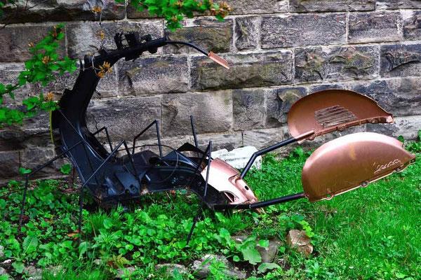 CA0309 Toronto Scorpion