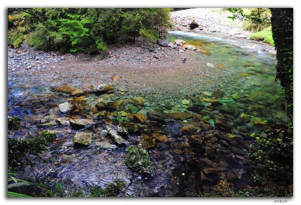 NZ0575.Anatoki Track.Stanley River Crossing