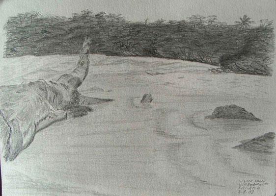 055.Skizze, Lizard beach, Isla Bastimento /Panama