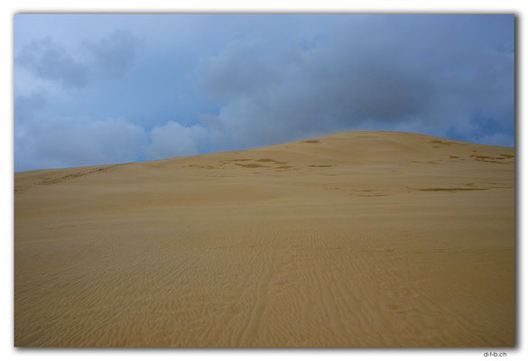 NZ0117.Sand Dune at Te Paki