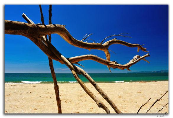 NZ0633.Milnthorpe Beach
