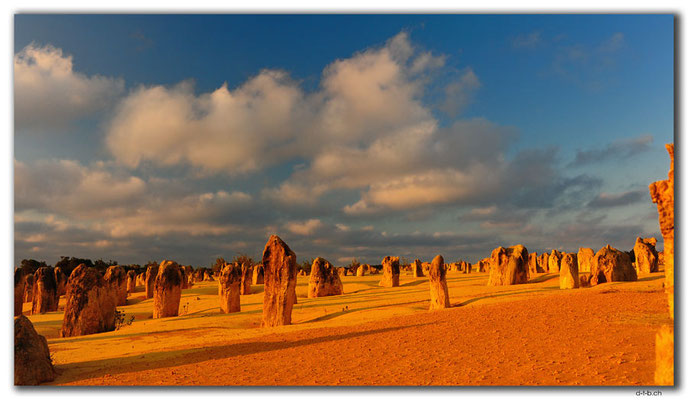 AU0604.Nambung N.P.Pinnacles