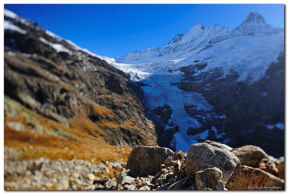 A0716. Oberer Grindelwaldgletscher.CH