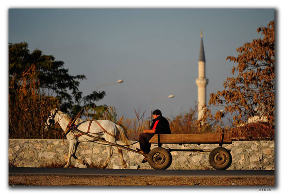 TR0038.Edirne.Pferdefuhrwerk