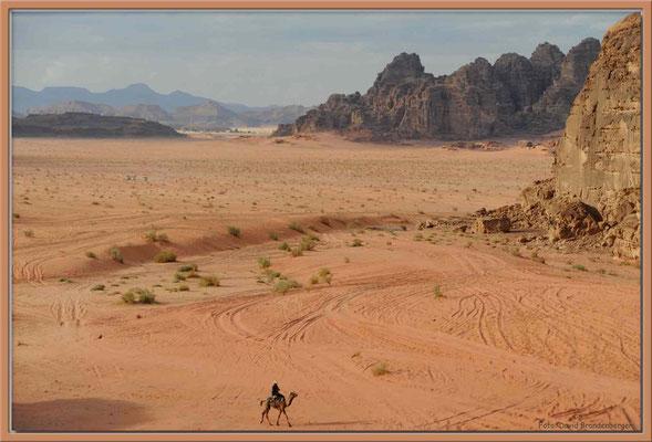 JO007.Kamelreiter.Wadi Rum