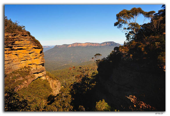 AU1719.Blue Mountains.Prince Henry Cliff Walk Lookout