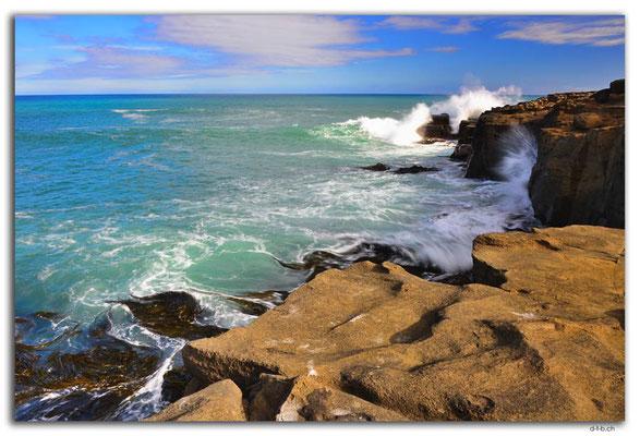 NZ0918.Curio Bay,Wave