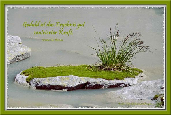 S0047.Inselchen.Bürgensee.CH