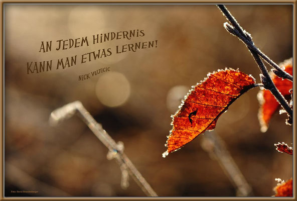 S0149.Morgenreif,Heidenheim.DE.Text: Nick Vujicic