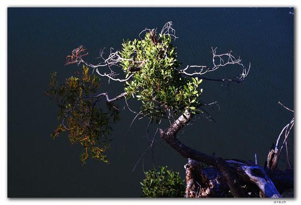 AU1272.Launceston.Cataract Gorge