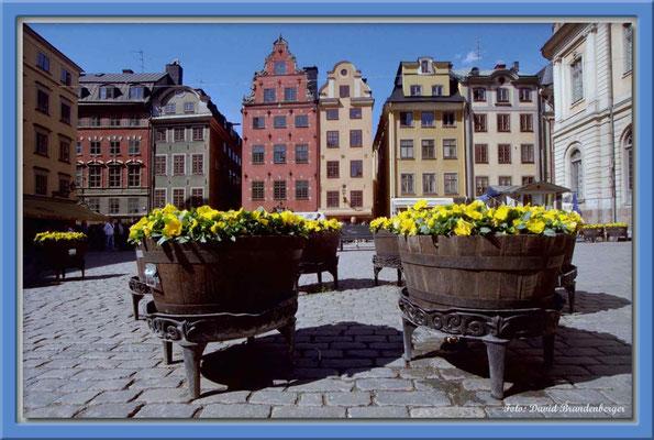 A0181.Stor Torget.Stockholm.SE