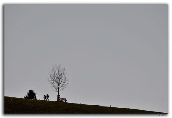 A0813.Waldstatt.CH