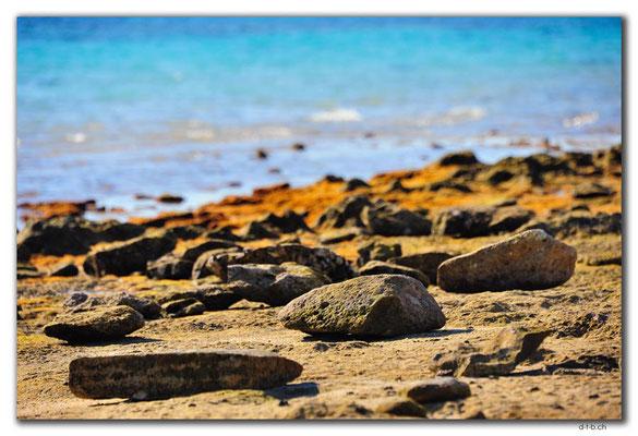 AU0373.Coral Bay.Steine