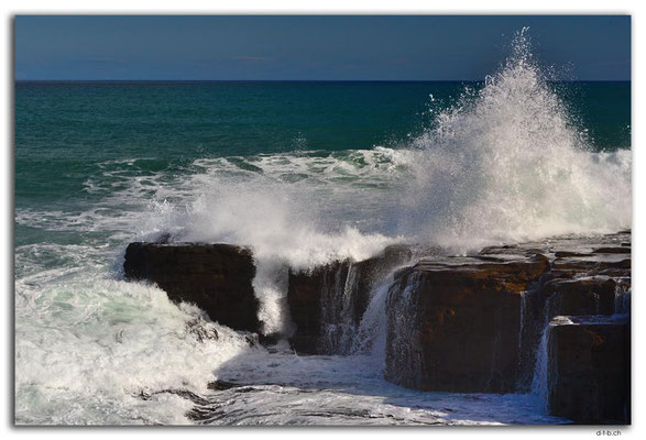 NZ0919.Curio Bay,Wave