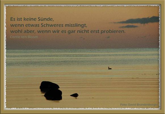 S0066.Morgen.Gotland,SE