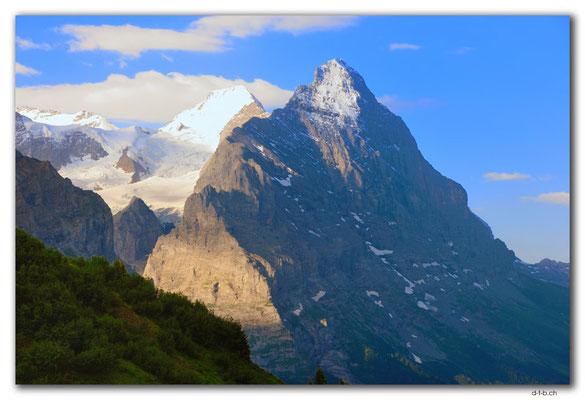 GW0126.Mönch und Eiger von der Grossen Scheidegg