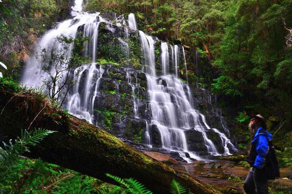 Australien.Tasmanien.Nelson Falls