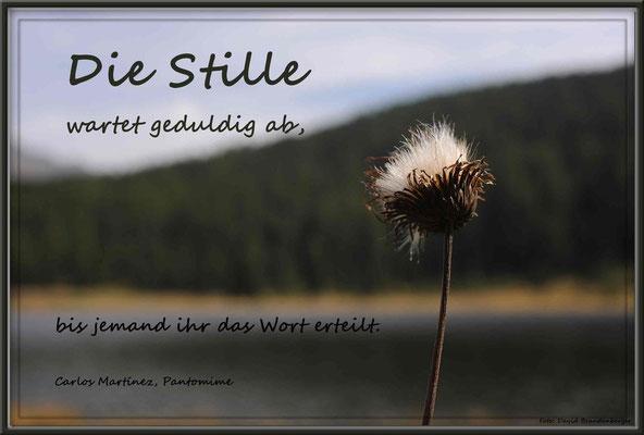 S0113.Stelzersee.St.Moritz,CH.Text: Carlos Martinez