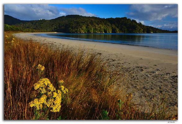 NZ0868.Stewart Island.Rakiura Track.Maori Beach