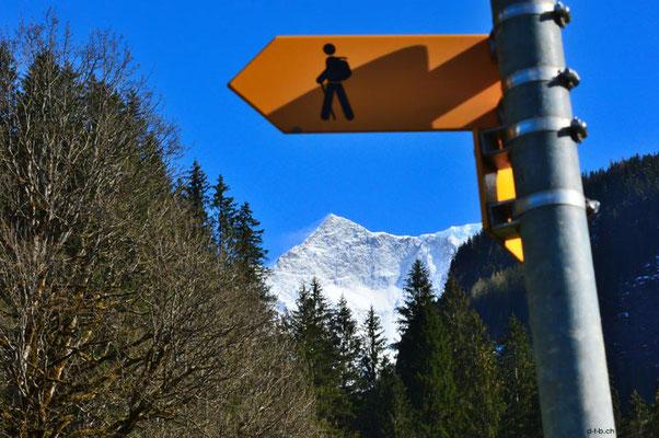 Schweiz.Grindelwald03