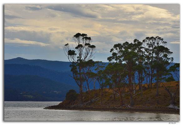 AU1315.Bruny Island.Apollo Bay.Robert Point