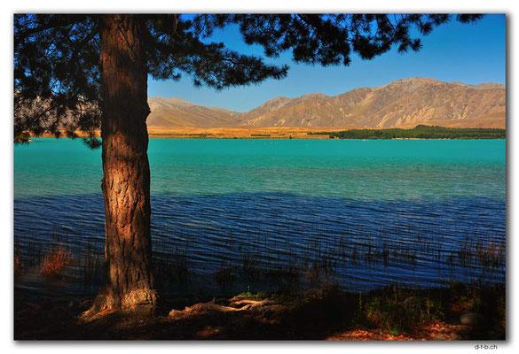 NZ0772.Lake Tekapo