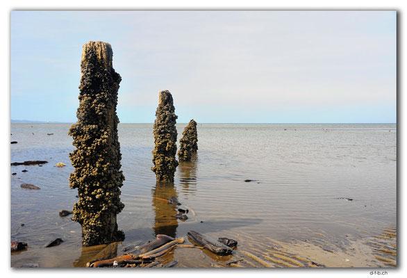 NZ0637.Collingwood beach